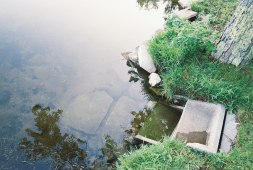stone steps into water
