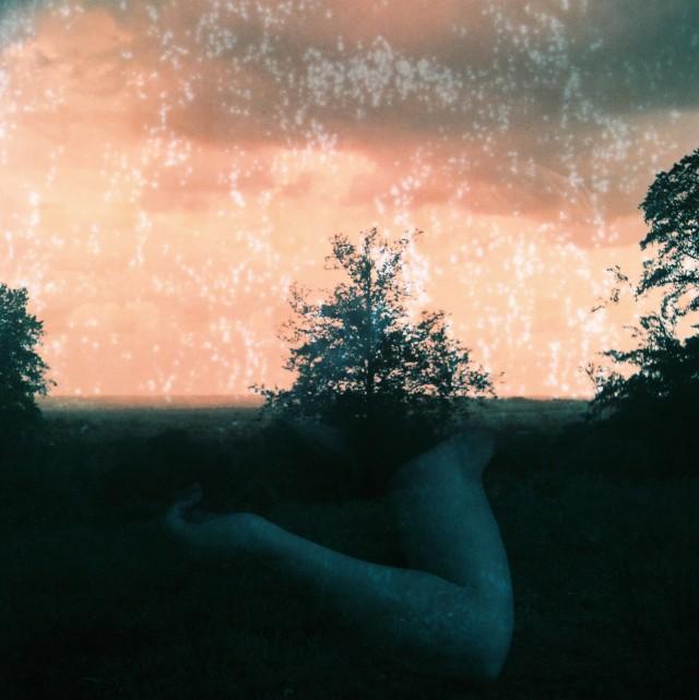 double exposure tree arm